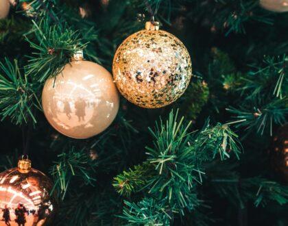 The Twelve Days of Christmas Celebration